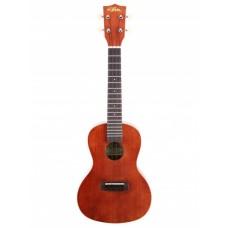 ARIA ACU-1 укулеле, концертная, 18 ладов